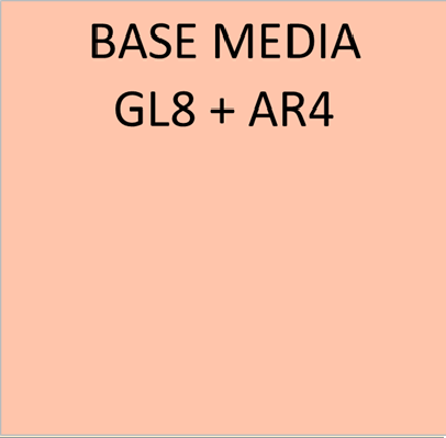 BASE MEDIA GL8+AR4